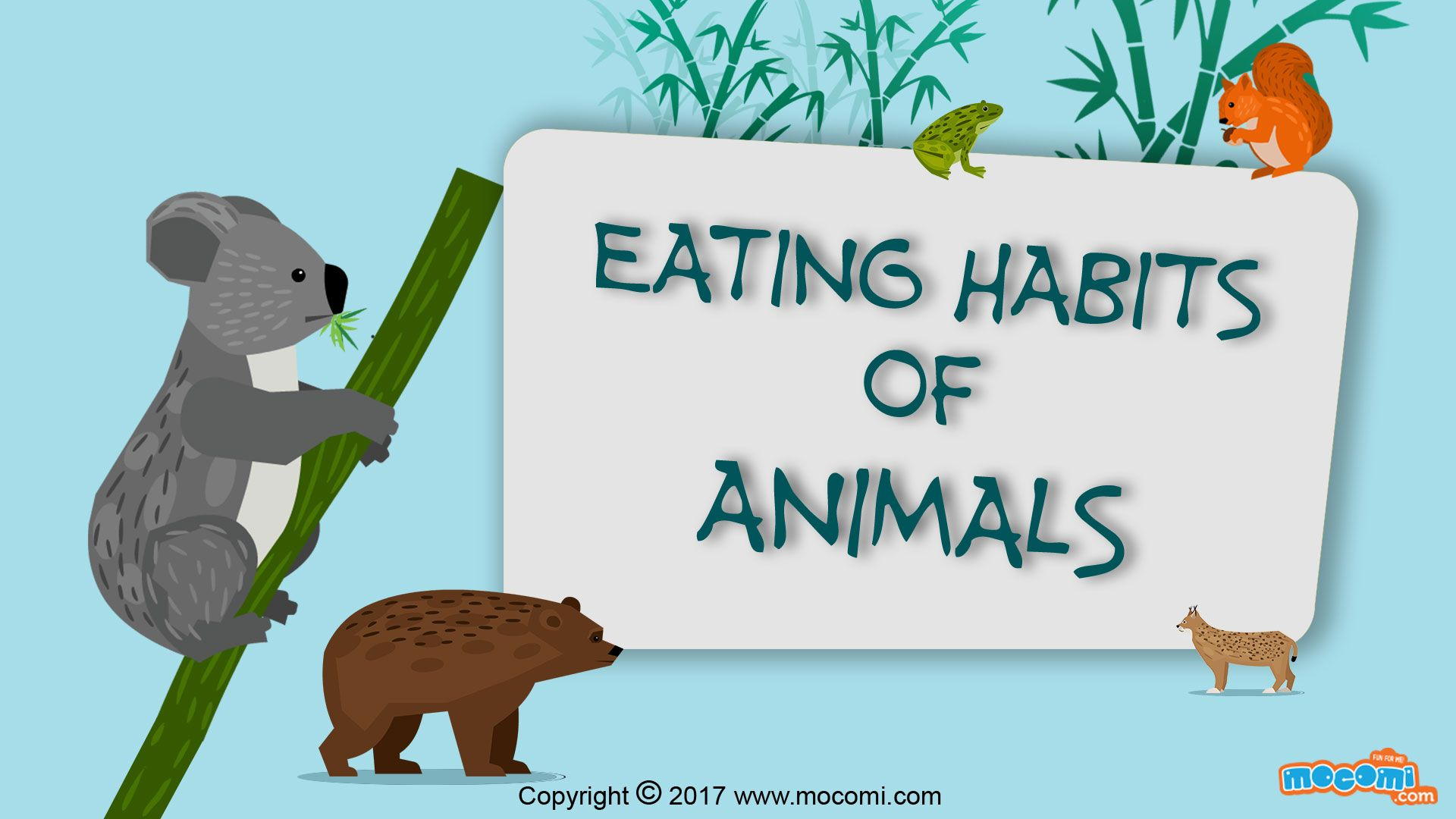Eating Habits Of Animals Biology For Kids Mocomi Eating