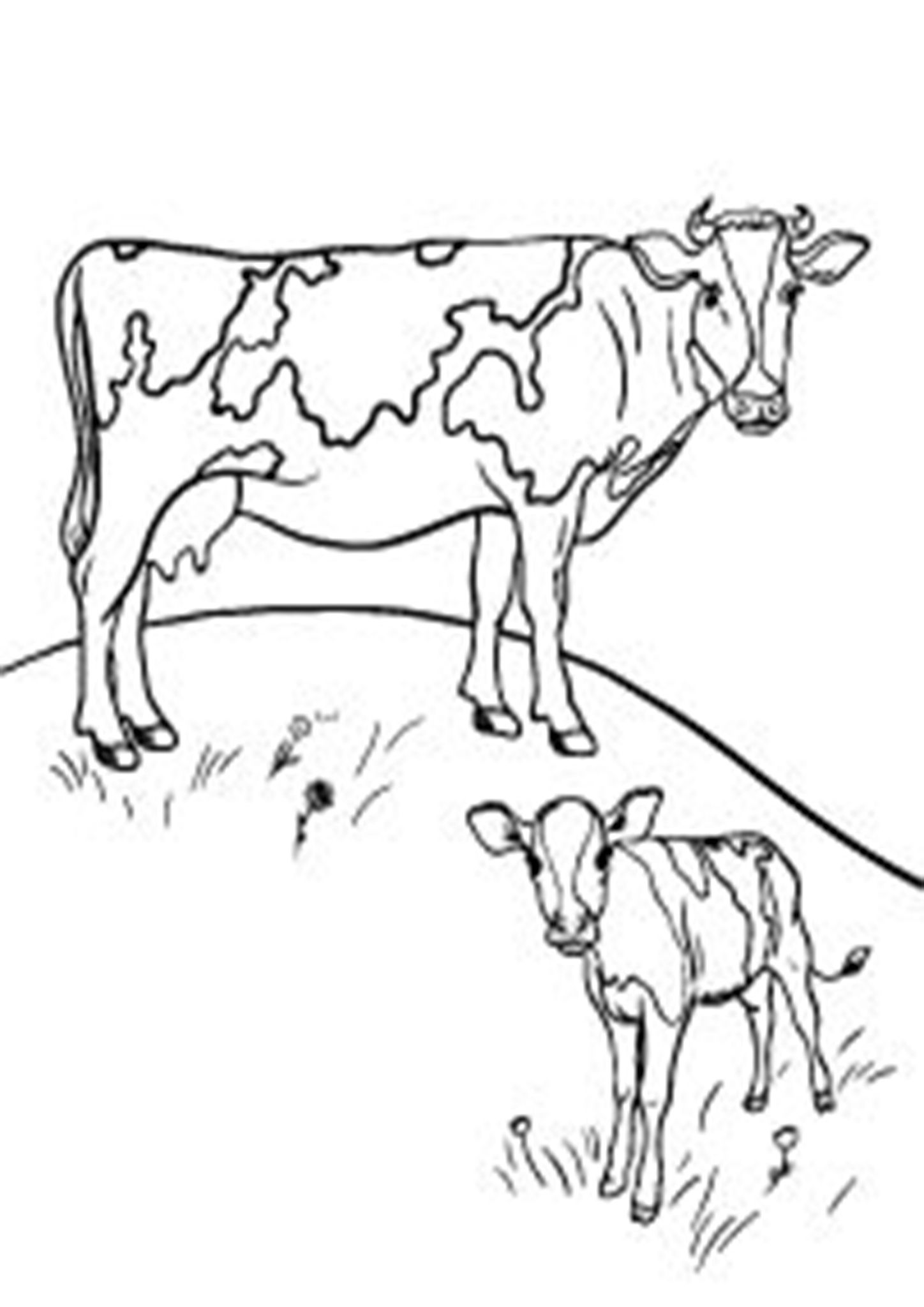 Free Easy To Print Cow Coloring Pages Farm Animal Coloring Pages Cow Coloring Pages Animal Coloring Pages