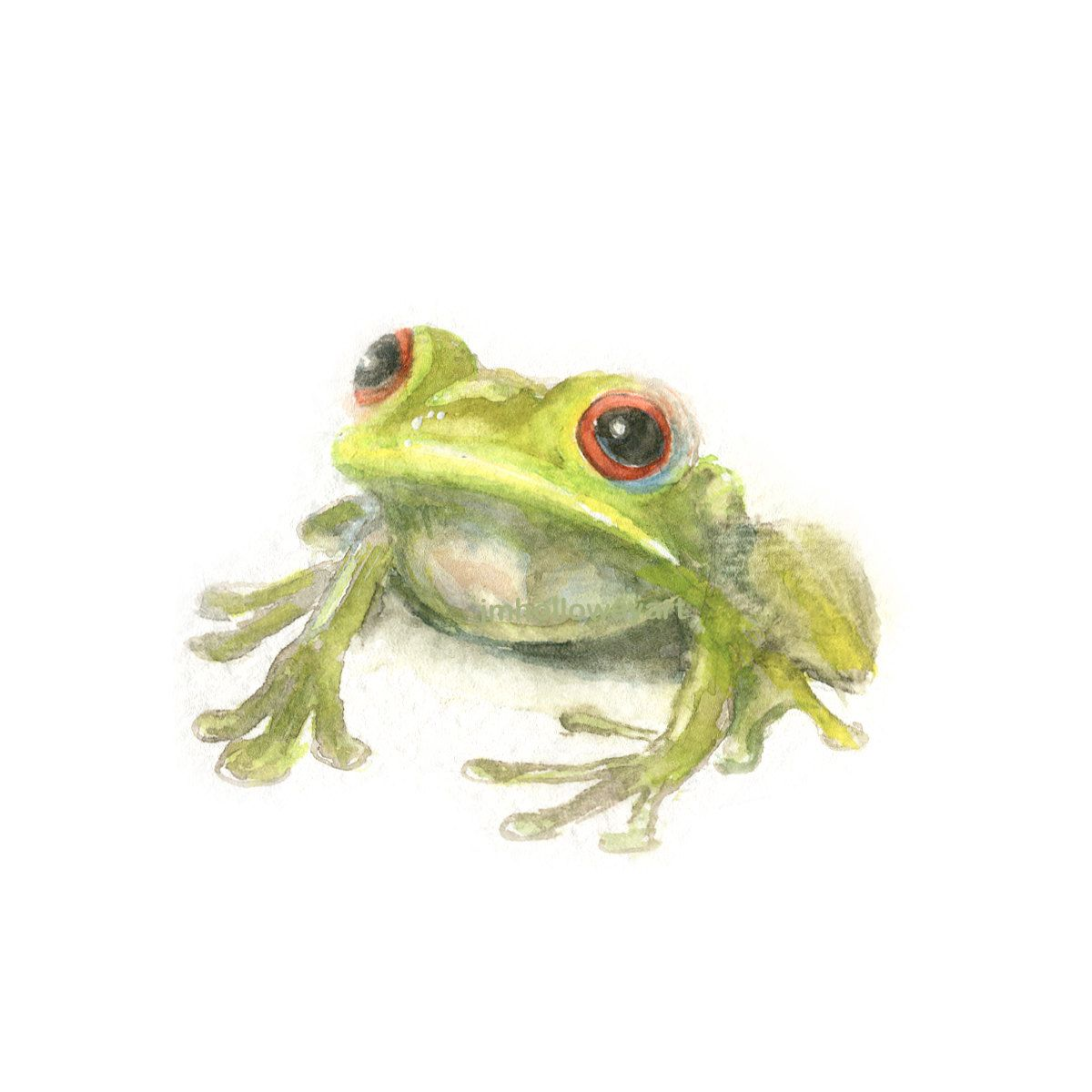 Watercolor Frog, Green Frog Print, Frog Print by locotzinc on Etsy
