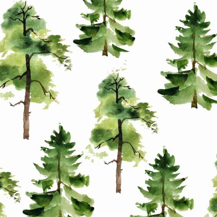 Cedar Wallpaper