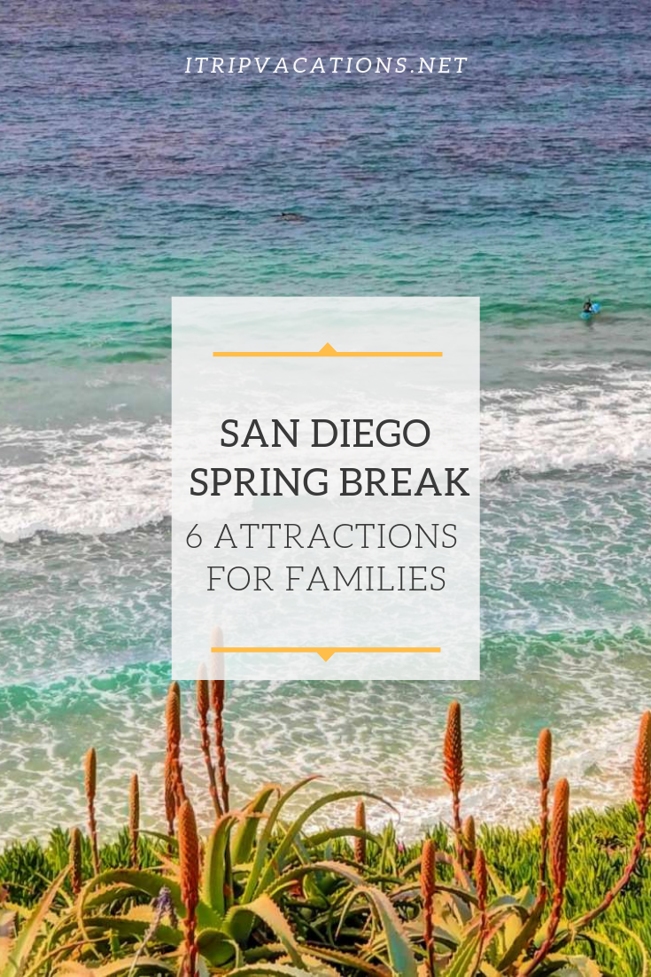 San Diego Spring Break: 6 Attractions For Vacationing