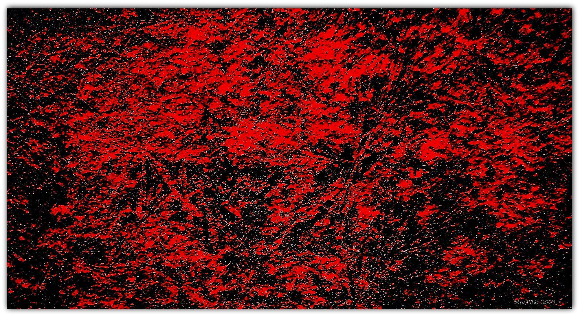 Eero Paso. Punainen 2009
