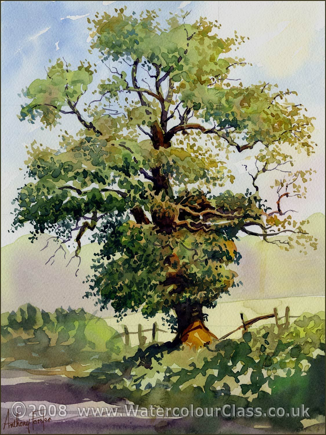 Watercolor Painting Of Trees Pindalene Van Rensburg On Trees