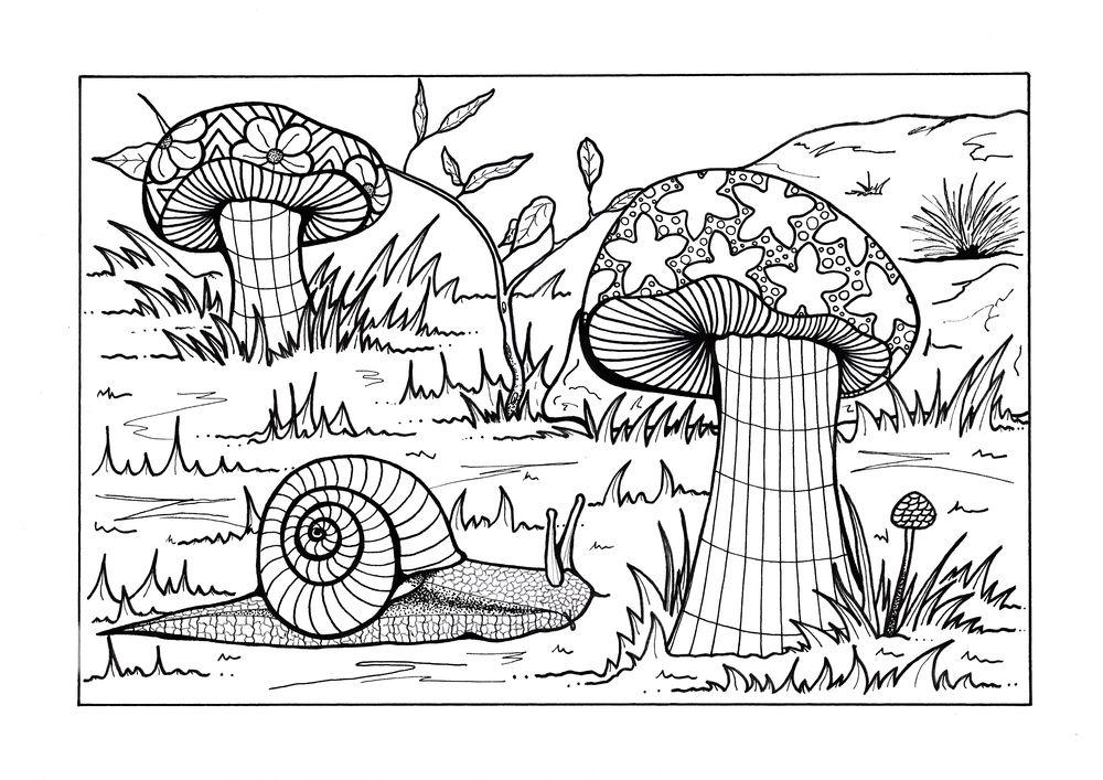 Forest Floor Adult Coloring Page | Libros para colorear, Colorear y ...