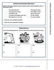 Qualitative and Quantitative Observations Worksheet | 7th Grade ...