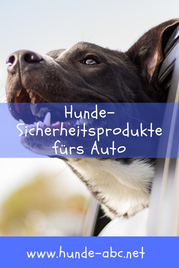 Dogstyler Hunde Transportbox Hund Hund Auto
