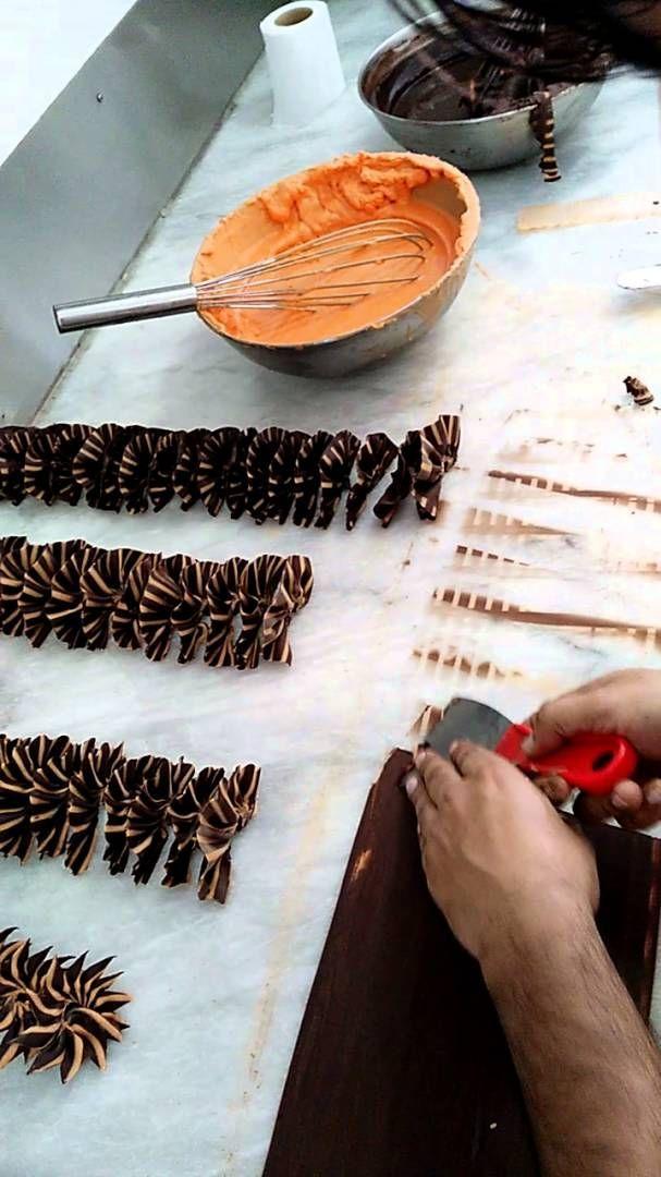 Würmer In Schokolade