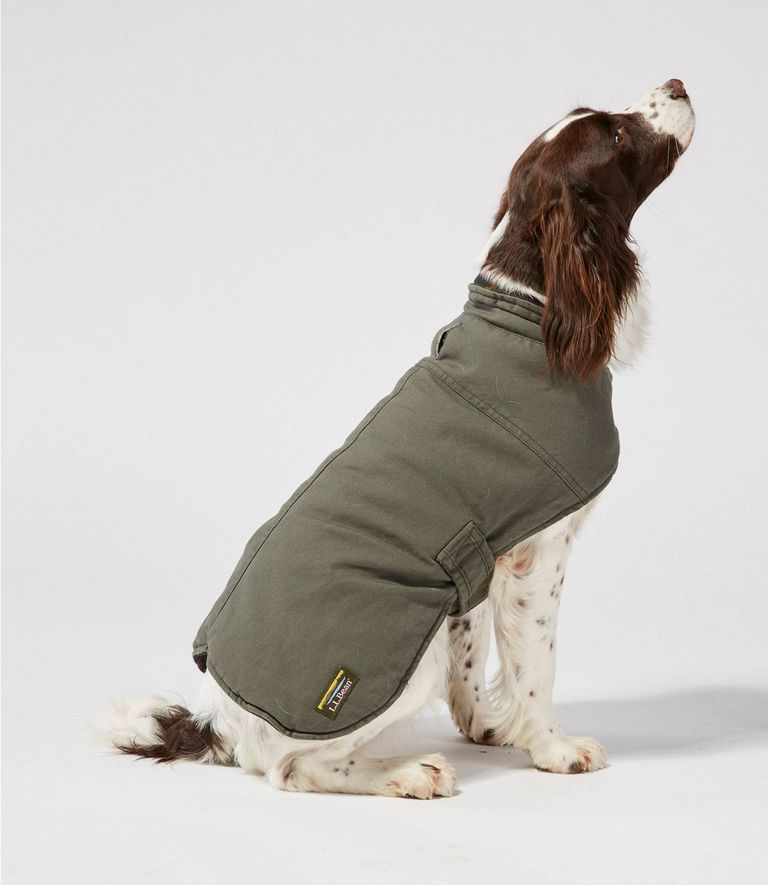 This Heated Dog Coat Is Perfect For Folks Who Love Spoiling Their