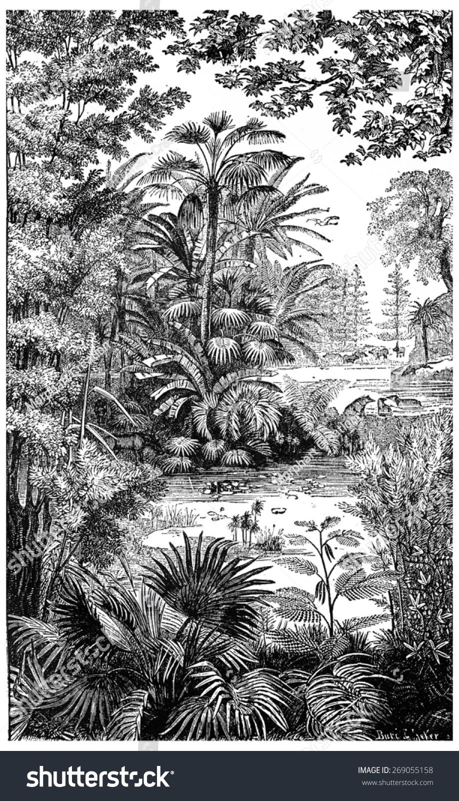 Landscape of the Miocene period in Lausanne, vintage engraved illustration. Earth before man ...