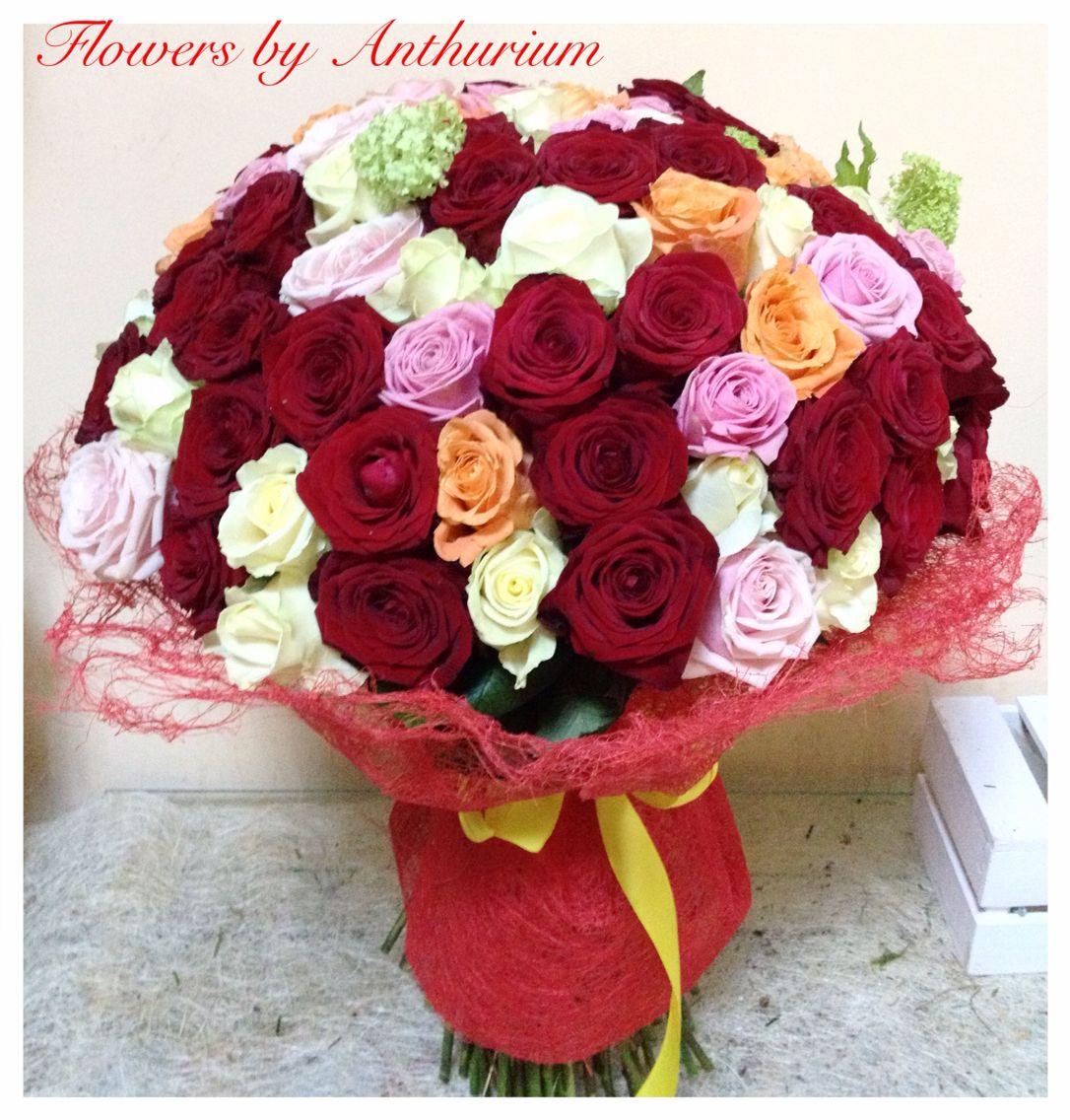 101 Roses  101 trandafiri