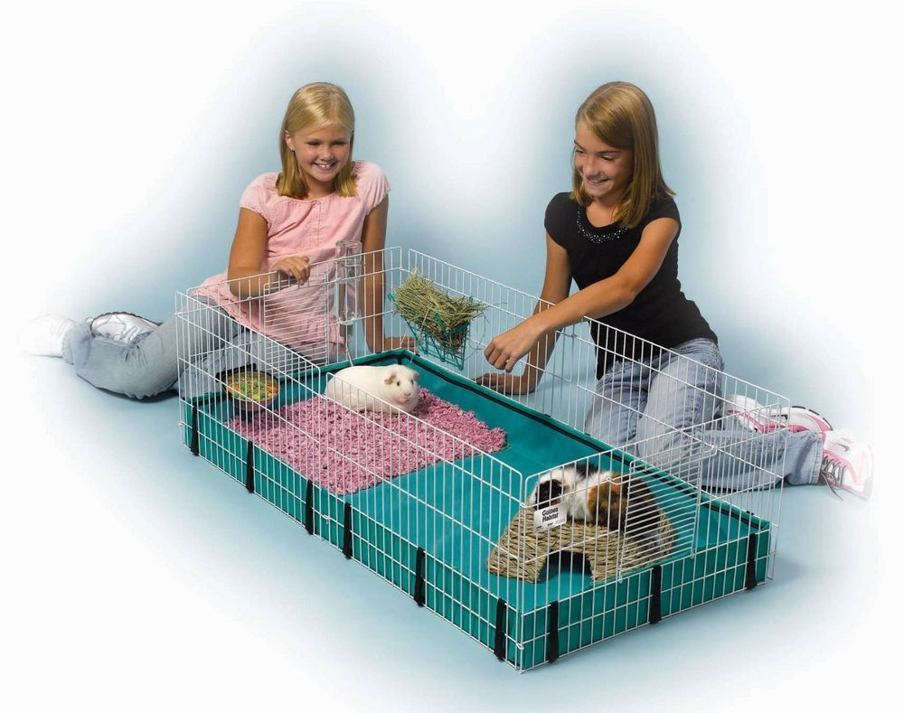 midwest homes for pets large interactive guinea pig hamster cage