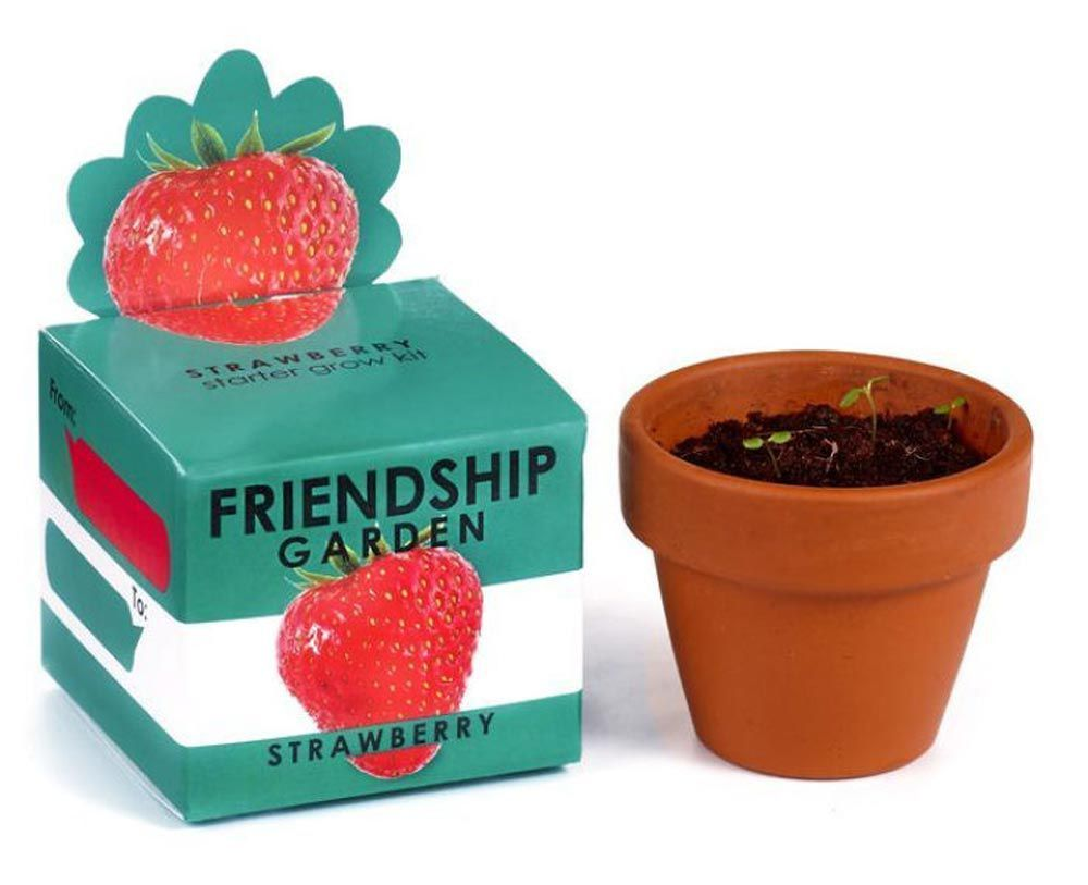 Home garden kit   Tiny Presents You Can Give Someone to Make Their Day for No