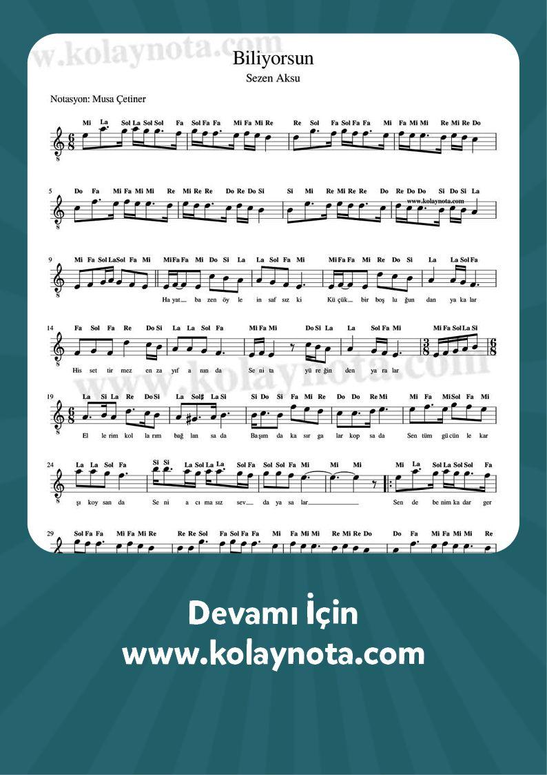 Sezen Aksu Biliyorsun Keman Muzik Notalari Flut