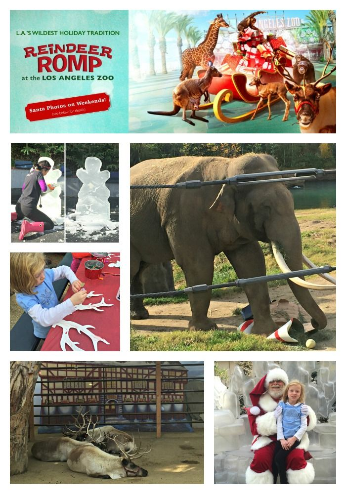 The Reindeer Romp Holiday Celebration At The La Zoo Runs November 27 Through January 3 2016 Except Christmas Day F Santa Photos Family Adventure Travel Romp