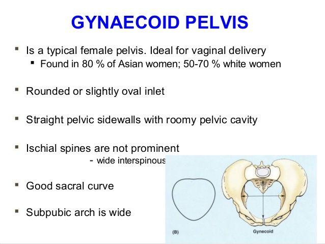 Applied Anatomy Of Pelvis And Fetal Skull 37 638g 638479