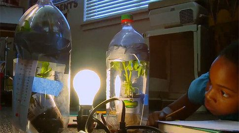 Greenhouse Effect Experiment For Kids
