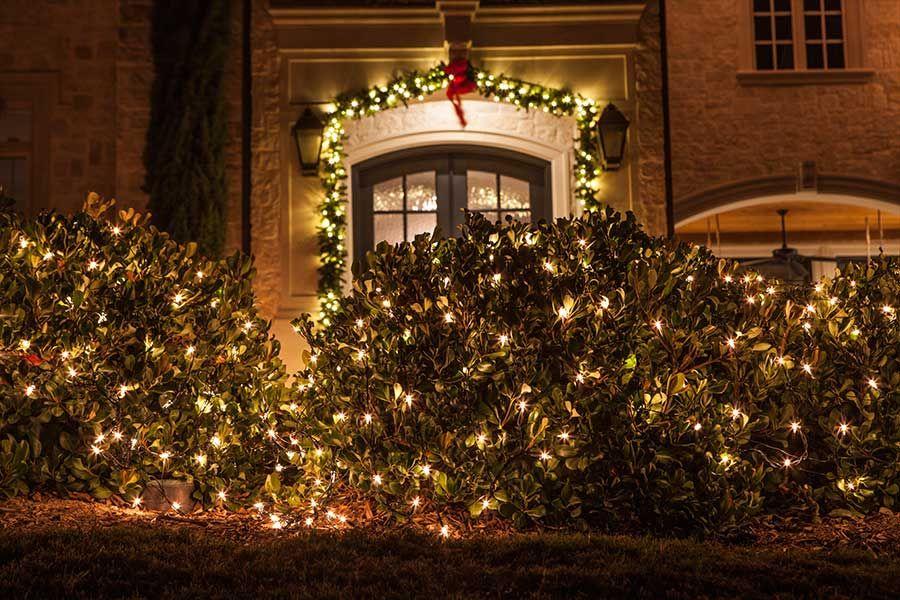 Warm christmas lighting for greenery dallas the perfect light warm christmas lighting for greenery dallas the aloadofball Images