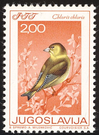 European Greenfinch stamps - mainly images - gallery format