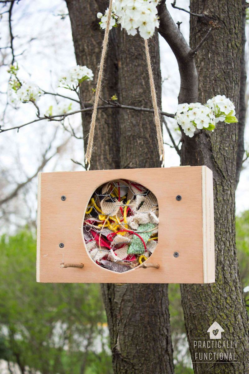Turn A Cigar Box Into A DIY Bird Nesting Material Holder