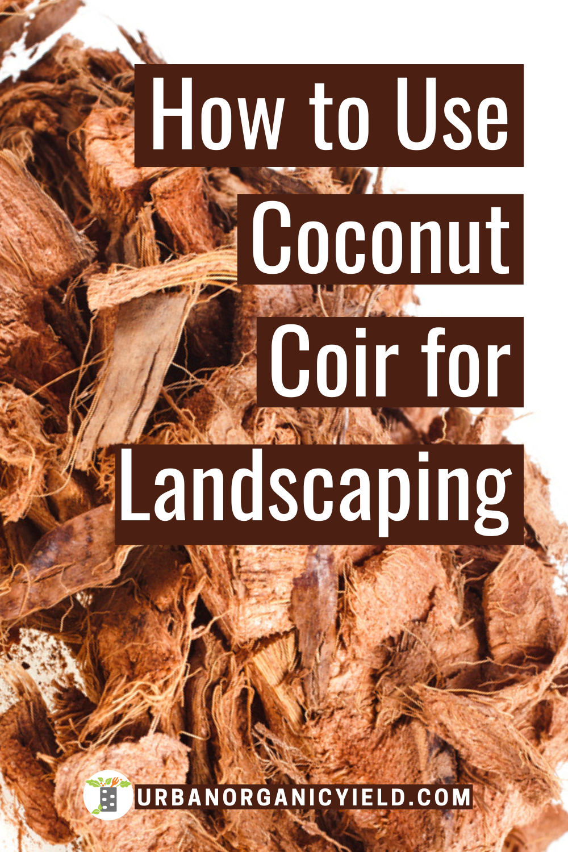 fe0bdaa51752f7c513cf3df61366c6a9 - How To Use Coconut Coir In Gardening