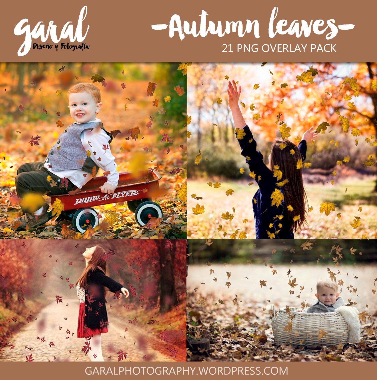 21 Autumn Leaves Photoshop Overlays, Halloween Overlays, Fall Overlays, Falling