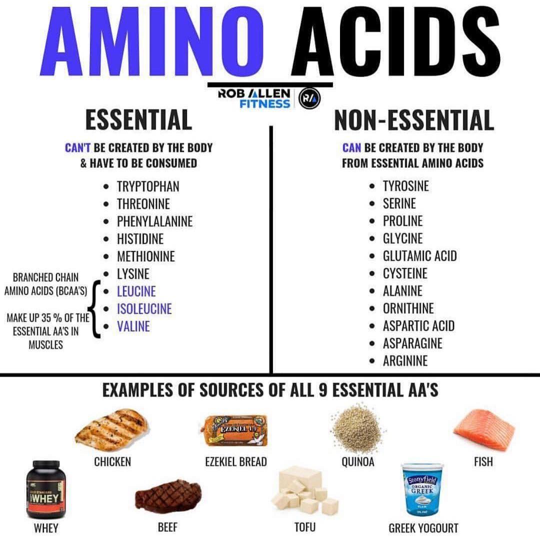 fe0c1cc1fccfd8c5950b9f74f7f22818 - How To Get All Your Amino Acids As A Vegan