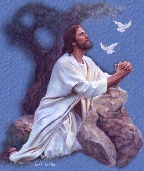 резво, скоро камень на котором молился господь иисус фото опубликовала своем