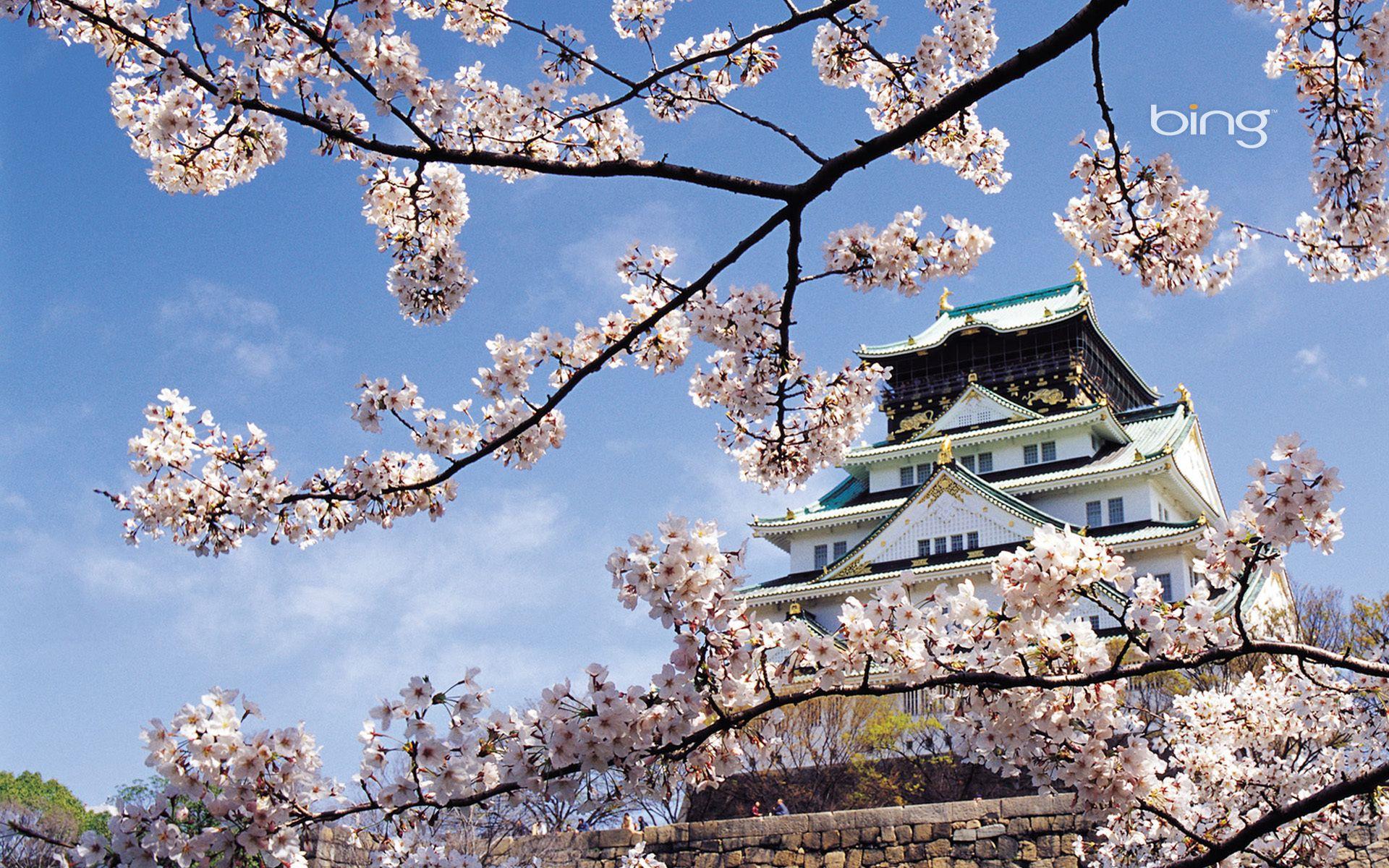 Design Japanese Landscapes google image result for httpimages2 fanpop comimagephotos comimagephotos14600000 japanese landscape samurai 14636844 1920 1200 jpg pics to