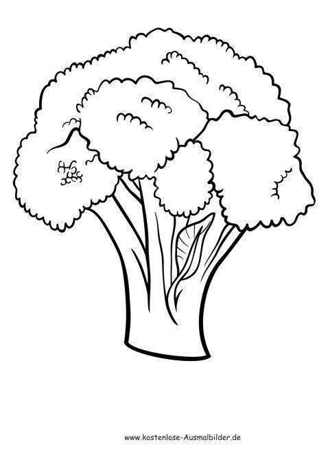 Ausmalbilder - Malvorlagen Gemuese - Blumenkohl