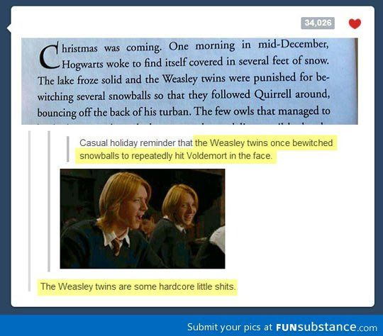 Don T Mess With The Weasley Twins Funsubstance Weasley Twins Harry Potter Obsession Harry Potter Funny