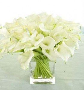 Copos De Leite Lindos Arranjos De Flores Arranjos De Flores