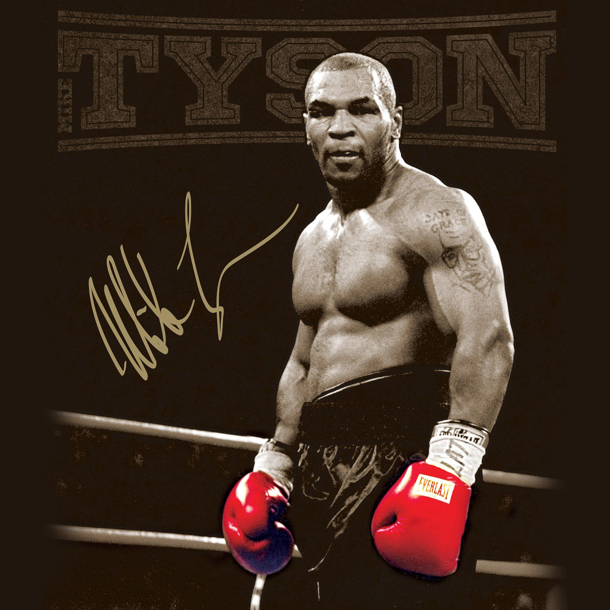 Mike Tyson Wallpapers Hd Mike Tyson Mike Tyson Boxing Tyson Boxer