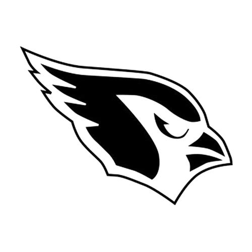 Seahawks Black Sports Teams Automotive Decal//Bumper Sticker
