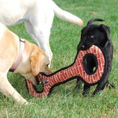 Indestructible Dog Toys Excellent My Doggie Needs Toys That Don