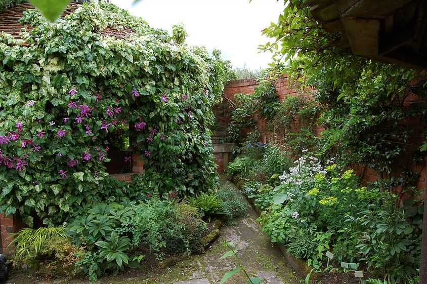 Photographs Of Stone House Cottage Garden Nursery