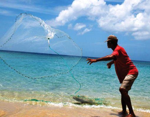 Caribbean Fishing In Crystal Clear Waters Fishing Vacation Saltwater Flies Sea Fishing