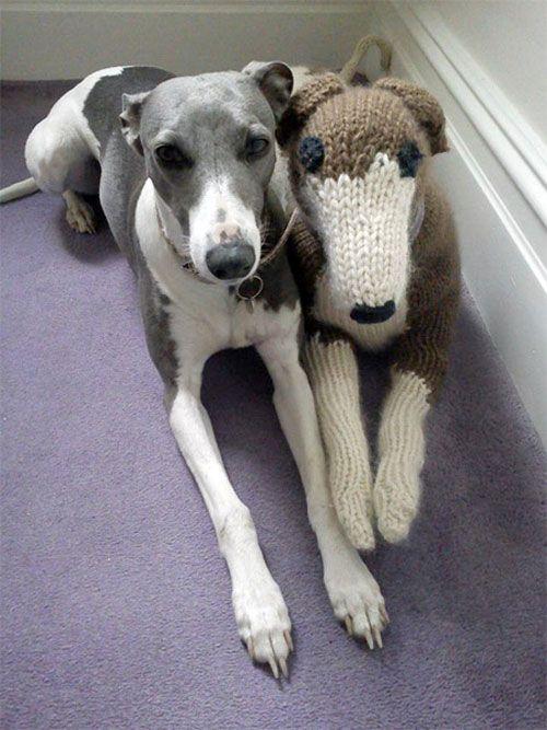 優しい質感のニットで制作できる 犬オブジェキットシリーズ 犬 ウィペット グレーハウンド