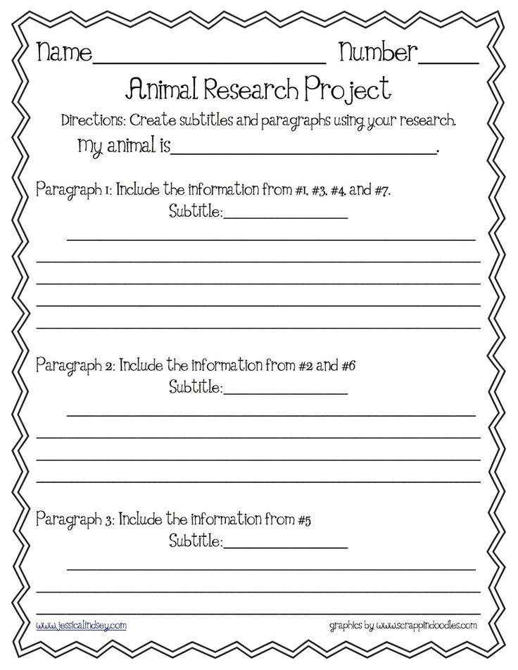 Animal Report Organizer | Animal Report Paragraph Organizer | Sci./S.S.