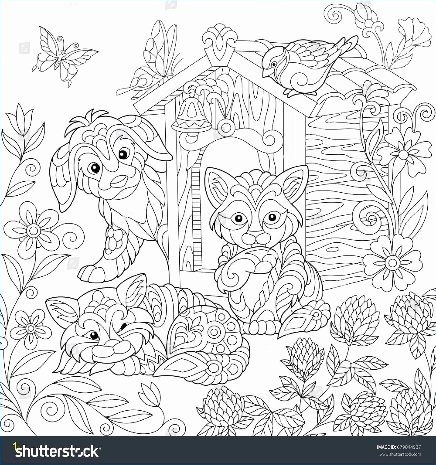 Coloring Book Little Space Fresh Basic Anatomy Coloring Pages