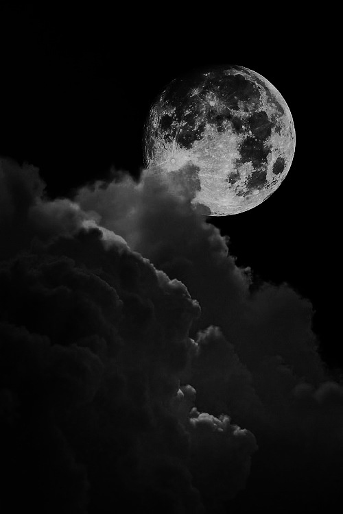 Original Post By N S E N S I V E L Tumblr Com Dark Wallpaper Iphone Black And White Picture Wall Black And White Photo Wall