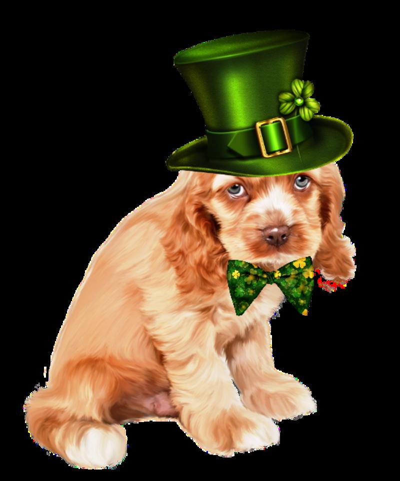 2el 5 Png Animal Art St Patrick Happy Patrick Day
