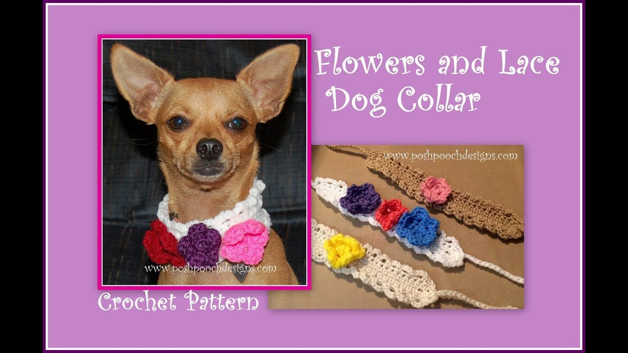 Flowers and Lace Dog Collar Crochet Pattern | CROCHETING - AFGHANS ...