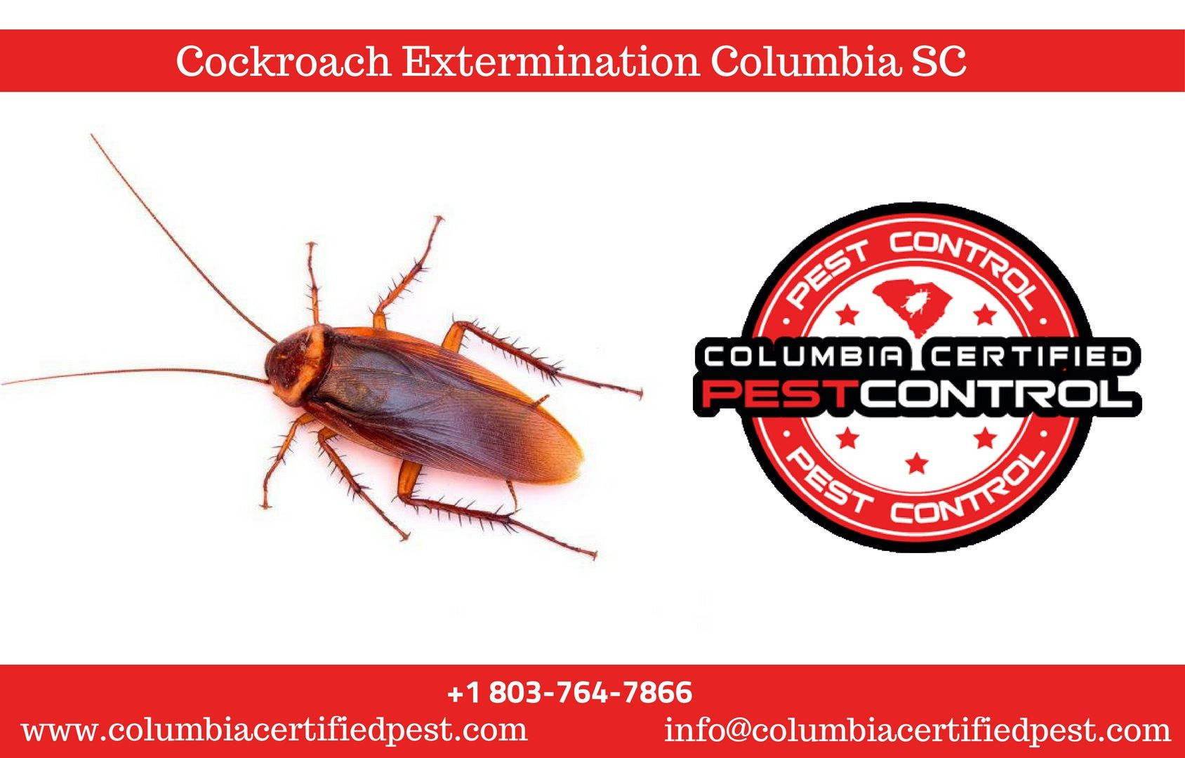 Roach Pest Control Columbia SC (With images) Cockroach