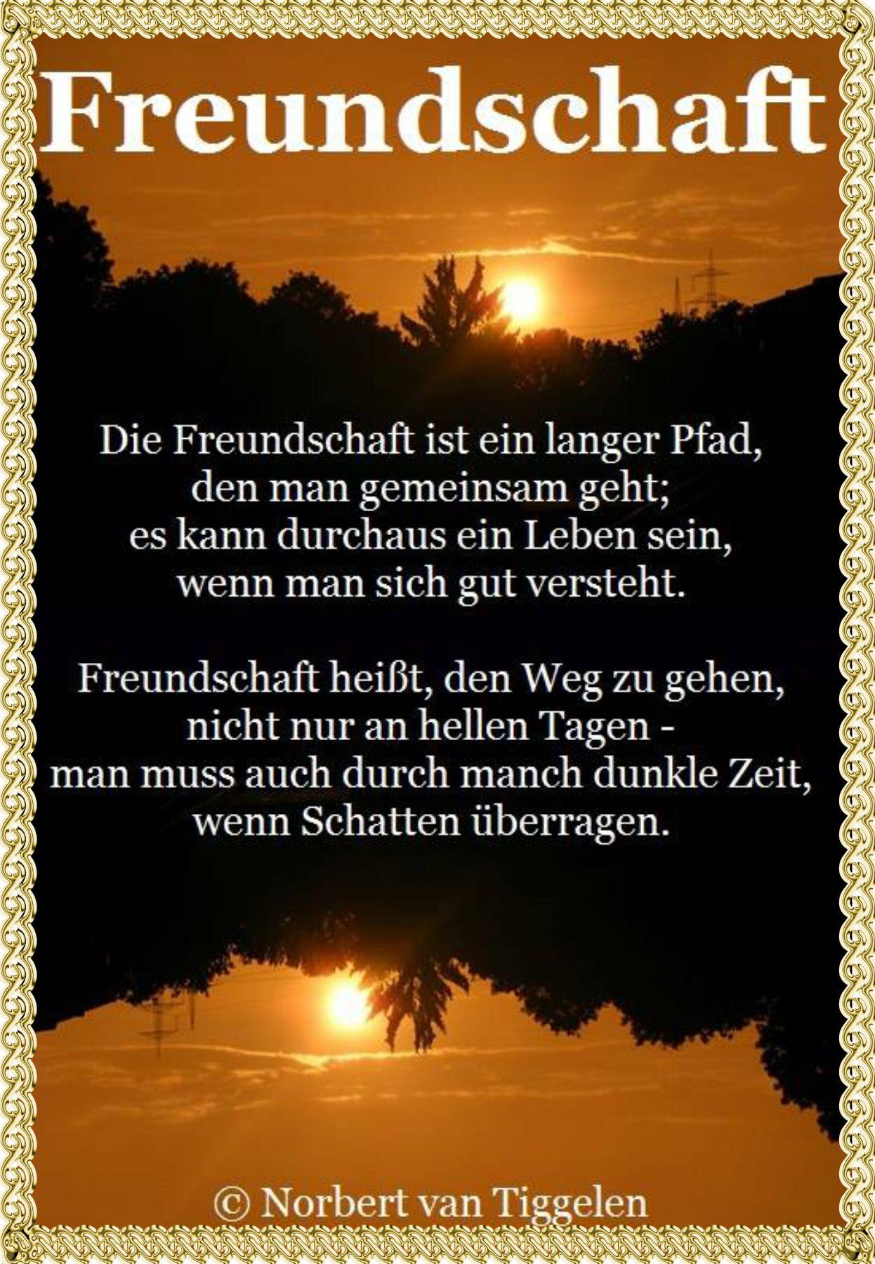 wunderschön geschrieben von Norbert van Tiggelen . ich