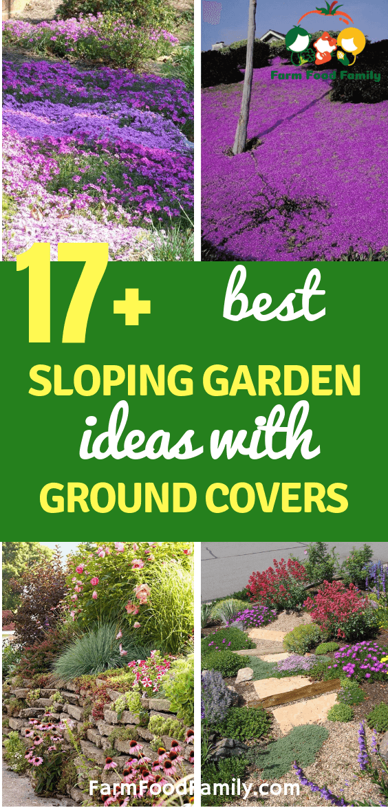 17 Sloping Garden Ideas With Ground Covers Farmfoodfamily Sloped Garden Ground Cover Landscaping A Slope