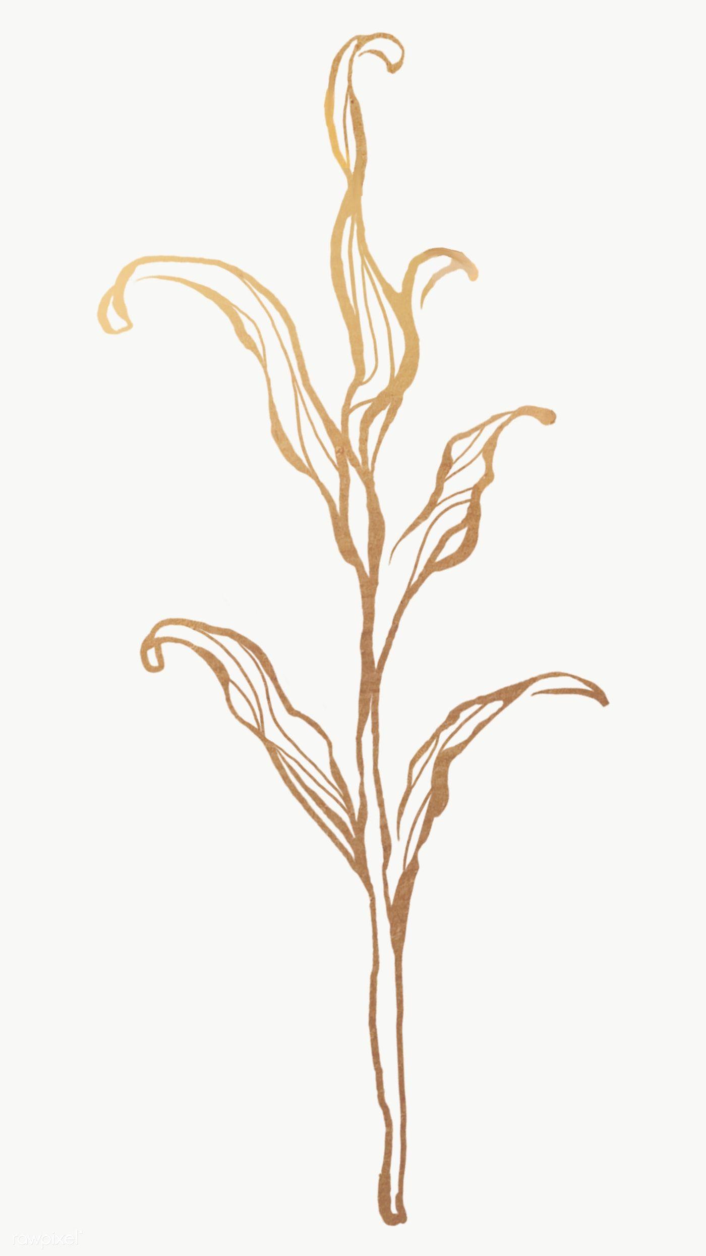 Gold Leaves Outline Transparent Png Premium Image By Rawpixel Com Nunny Leaf Outline Gold Leaf Painting Leaf Drawing