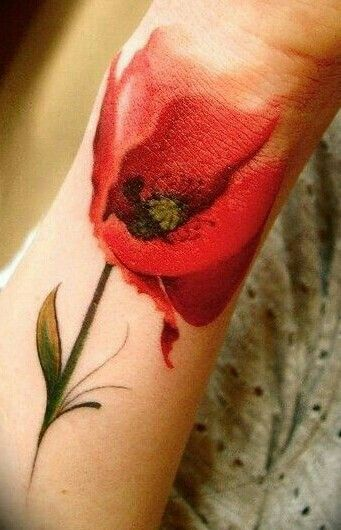 Poppy flower. This is neat.