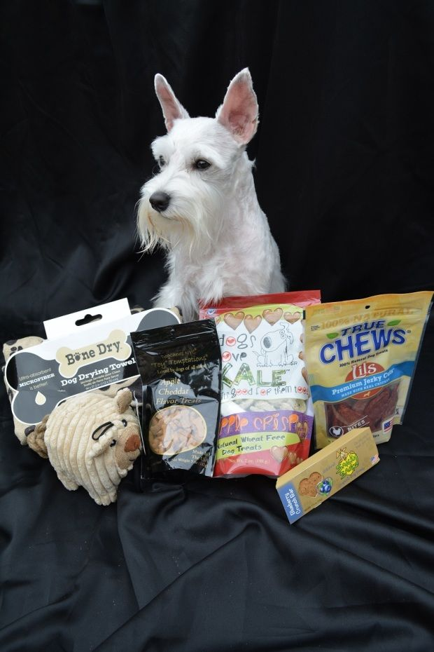Furryfriendsclub Review Giveaway Coupon Code Pets Giveaway Dogs