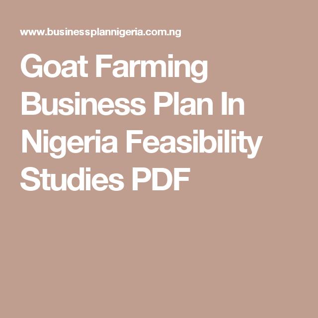 Goat Farming Business Plan In Nigeria Feasibility Studies