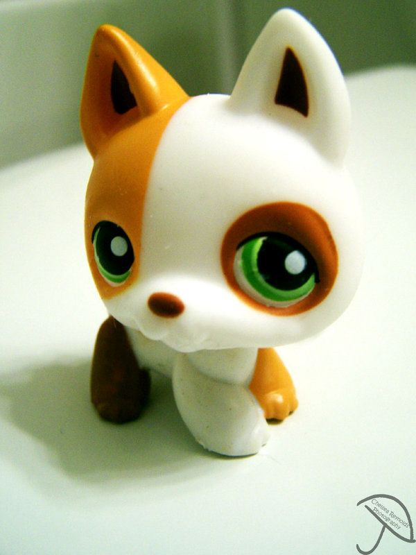Littlest Pet Shop Dog Ii By Chelseaisapansy On Deviantart